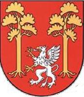 logotyp gminy Czarna