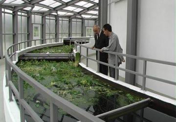 Inwestycje w zakresie gospodarki ściekowej w gminie Skołyszyn