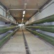 Inwestycje w zakresie Programu poprawy czystości zlewni rzeki Wisłoki – Etap II - miasto Jasło
